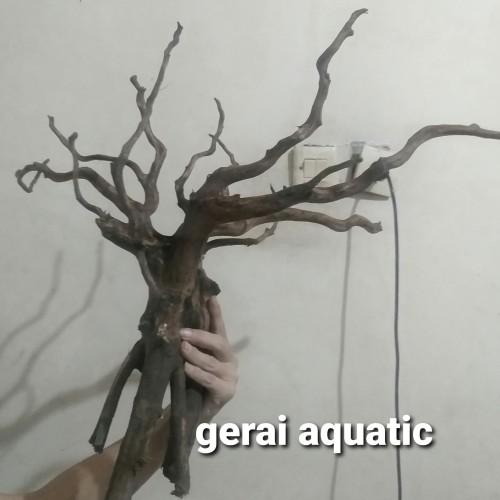 Foto Produk akar kayu rasamala gread a ukuran xl aquascape aquarium dari gerai aquatic