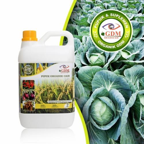 Foto Produk GDM Pupuk Organik Cair untuk Tanaman Pangan Sayur (kemasan 2 Liter) dari GDM Official Store