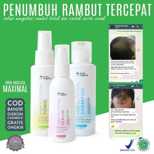 Foto Produk Green Angelica Hair Nutrition Maximal Penumbuh Rambut Botak Ampuh dari DELASHA STORE