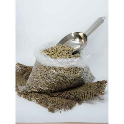 Foto Produk GREEN BEAN KOPI ARABIKA SUMATERA MANDAILING MANDHELING dari LOPO Mandheling Coffee