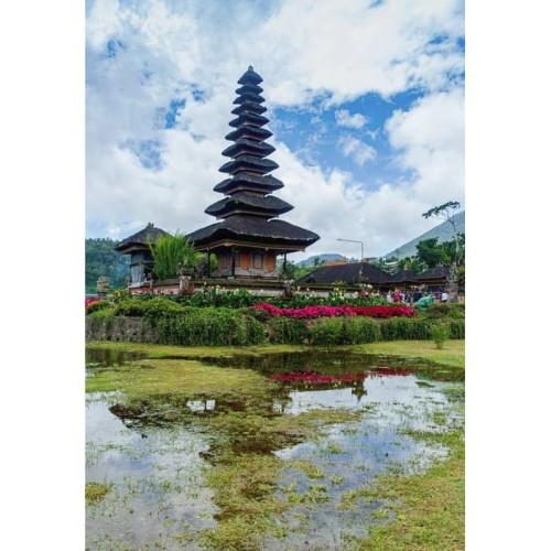 Foto Produk 3D2N INSTAGRAMABLE BEDUGUL (Land Only) dari Jagat Tours & Travel