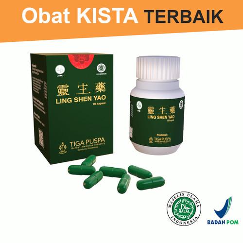 Foto Produk Ling Shen Yao Tablet - Obat Herbal Kanker Kista & Mioma - Lingshenyao dari Lingshenyao(Obat Herbal)