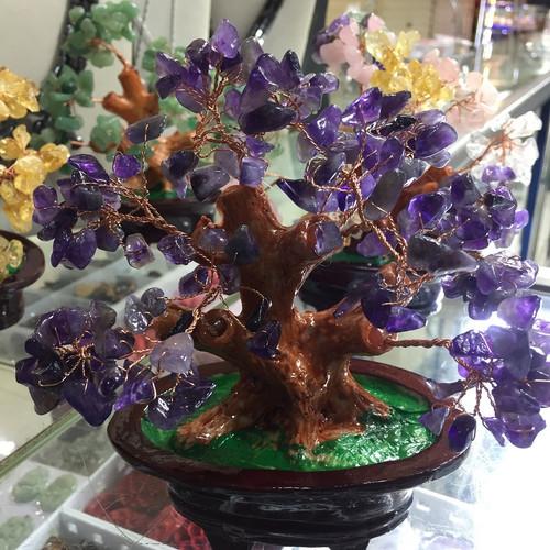 Foto Produk Pohon Keberuntungan FengShui Crystal Healing Energi Kesehatan - Amethyst dari Lapak Musiman