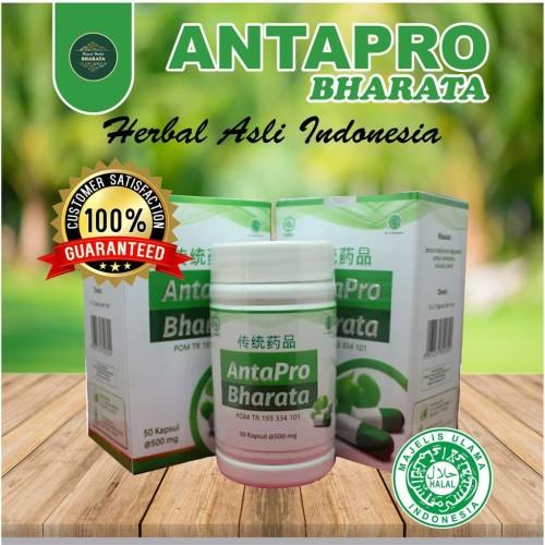 Foto Produk Obat Jantung Dan Stroke Terampuh Antapro Bharata dari Overbuy