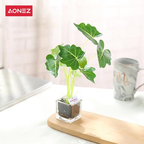 Foto Produk Aonez Bungan Hias Calla hijau bonsai dengan kaca persegi kecil - 801 dari AONEZ Official Store