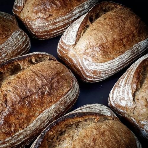Foto Produk Don Bakeshop Sourdough Bread - Country Bread dari Don Bakeshop