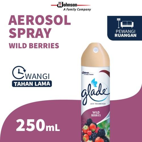 Foto Produk Glade Aerosol Wild Berries 250ml [ Khusus Pulau Jawa ] dari SC Johnson & Son ID