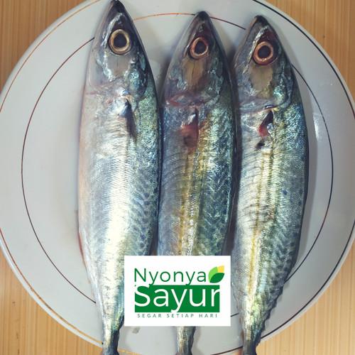 Foto Produk Ikan Kembung Banjar Segar dari Nyonya Sayur