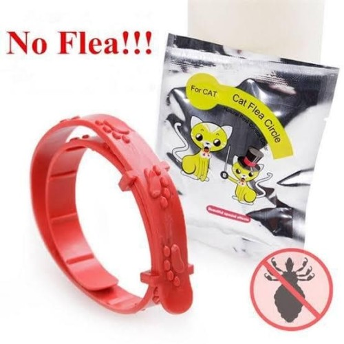 Foto Produk Kalung Anti Kutu Kucing Musang Anjing no flea dari Central Grosir no115