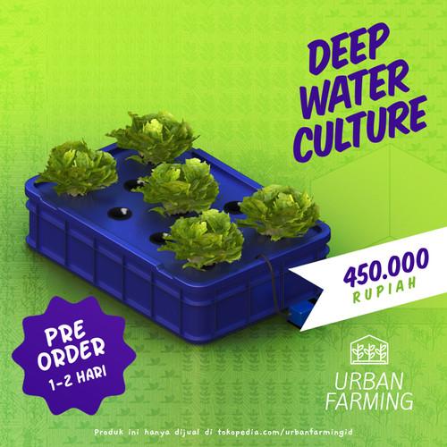 Foto Produk Deep Water Culture Hydroponic System - Wick/DWC/Hidroponik dari UrbanFarming
