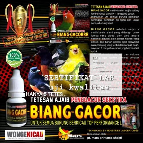 Foto Produk Paket Jamu Gacor Love Bird Bmwmasterindonesia dari bmwmasterbirdshop