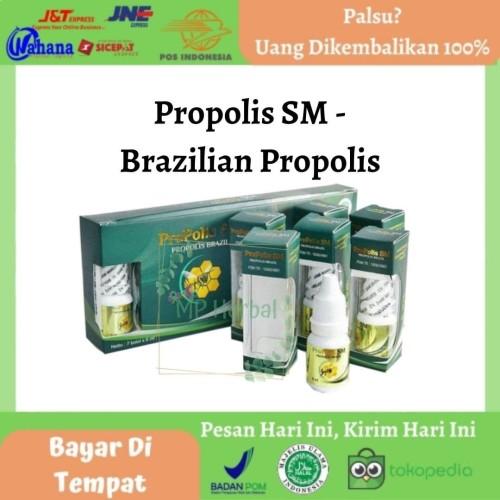 Foto Produk Propolis SM Isi 6ml - Obat Luka Bekas Koreng - Luka Bakar - Diabetes dari MP Herbal