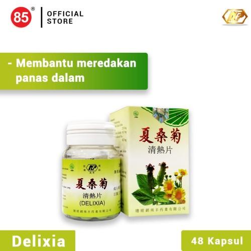 Foto Produk Nan Fung - Delixia Tablet Obat Herbal untuk Panas Dalam dari CITRA DELI KREASITAMA