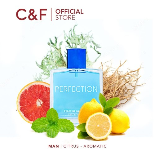 Foto Produk PARFUM PERFUME REPUBLIC PERFECTION EDT 100 ML dari C&F Store Official