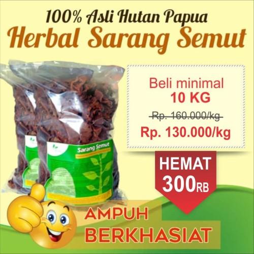 Foto Produk Obat kanker, tumor, liver, lupus herbal | sarang semut papua | curah dari Obat - Sehat Herbal