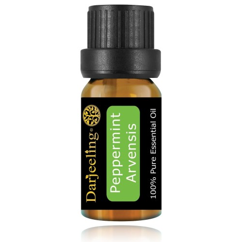 Foto Produk 10ml Peppermint Essential Oil / Minyak Daun Mint 100% Murni dari Darjeeling Store