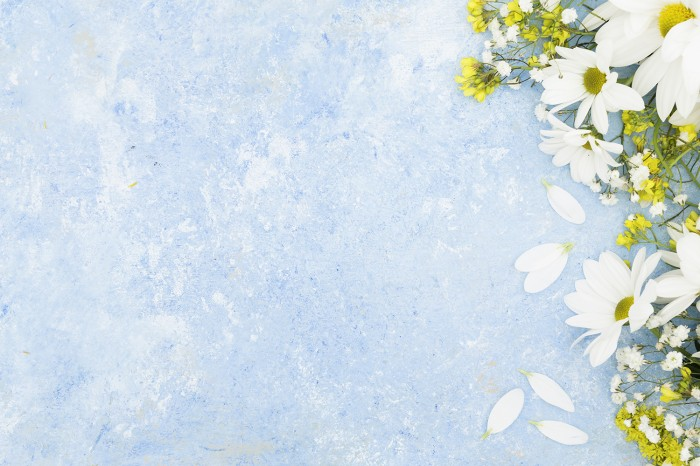 Jual Background Alas Foto Produk A3 (Bunga Putih) - Kab. Boyolali - Smart  Offset   Tokopedia