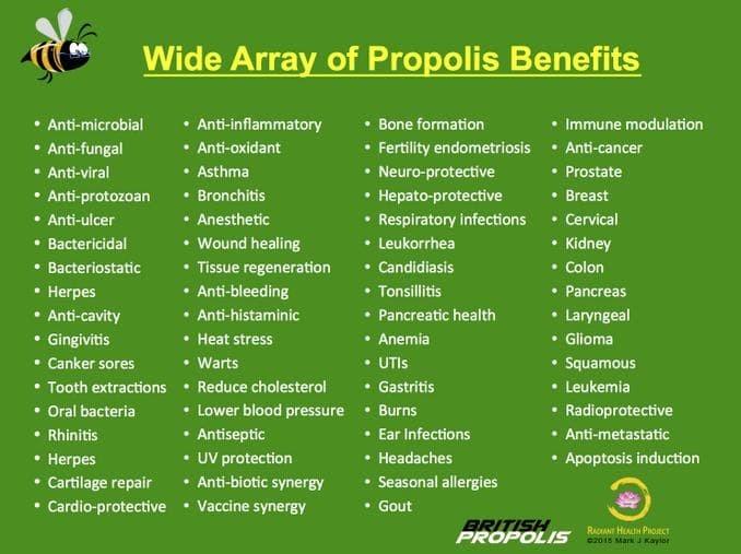 propolis az alkohol a prostatitis