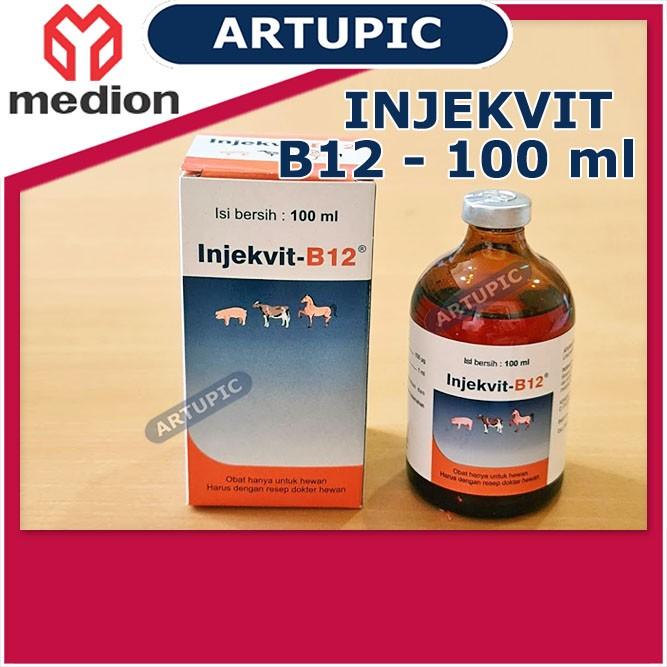 Injekvit B12 100