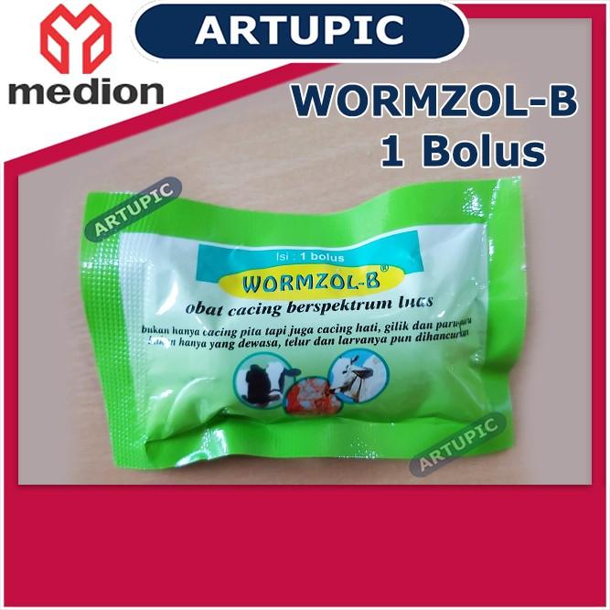 Wormzol Bolus 1 SACHET